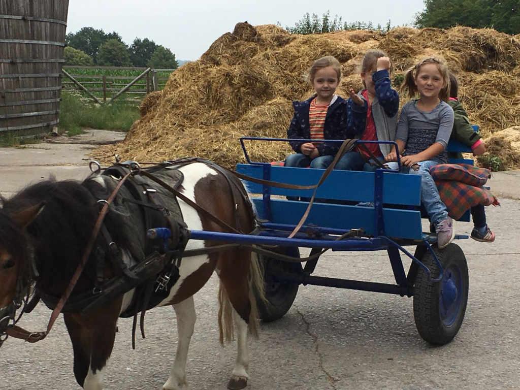 """Besuch auf dem Kinderbauernhof """"Heupferdchen"""""""